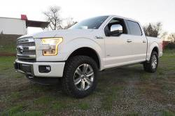 """BDS Suspension - BDS Suspension 2-1/2"""" leveling Kit for2009-2020 Ford F150 2WD / 4WD pickup trucks- 572H - Image 2"""
